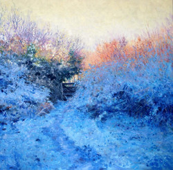 Andrew Barrowman - Frosty Hedgerow