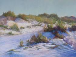 Marsha Hamby Savage - Fences & Dunes