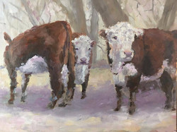 Ginny Takacs - Out to Pasture