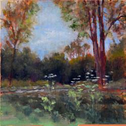 Tamar Rudavsky - Cowsnips at the Prairie