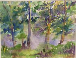 Jane Wright Wolf - Saugatuck River Mist