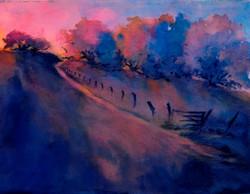 Virgil Carter - Hill Country Last Light, No. 1