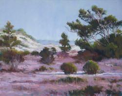 Marsha Hamby Savage - Dunes Mystery