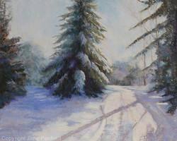 Jane Penfield - Stillness