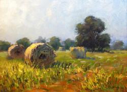 J.R. Cook - Hay Bales in Sudan Field
