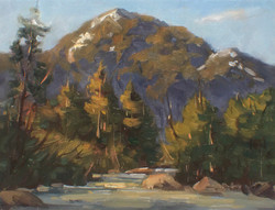 Igor Staritsin - Lynn Canyon Study