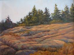 Jeanne Pierce - Essential Acadia