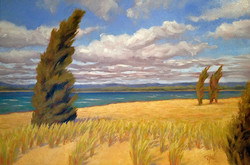 Kathy Mohl - Summer Wind