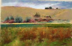 Cindy Kopenhafer - View from La Hacienda de Los Martinez