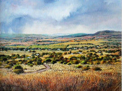 Ina Millman - View From My Studio