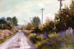Bonnie Zahn Griffith - Perkins Road