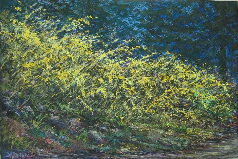 Jane Wright Wolf - Forsythia, Spring Night