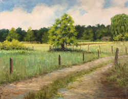 Bruce Foxworthy - Lane at Sunshine Farm
