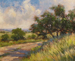 J.R. Cook - Hill Country Road