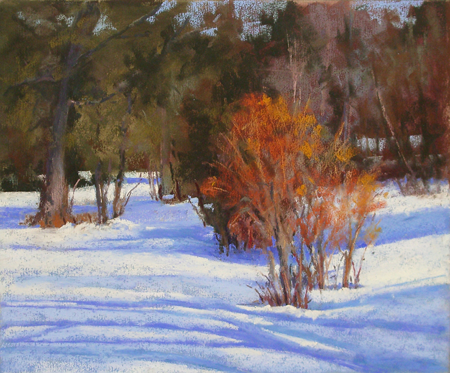 Suzanne deLesseps - Snow Shadows