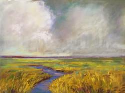 Sherri Cassell - Stormy Marshland