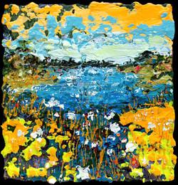 Nancy Overbury - Blossoming Pond