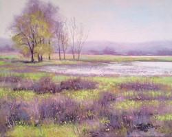 Brent Seevers - Spring Marsh (pastel)