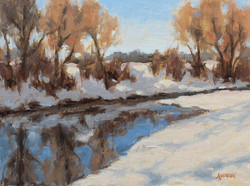 Janet Anderson - South Platte Reflections