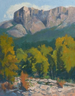 Linda Curtis - The Crags