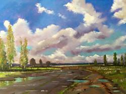 Mike Samson - Autumn Sky