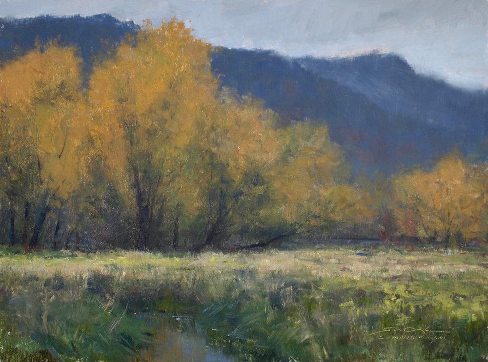 Joshua Cunningham - Fall Below the Bluffs