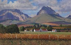 Roelof Rossouw - Simonsig Farm, Paarl