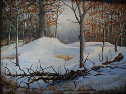 Bruce Foxworthy - Winter's Morning Light