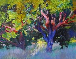 Nancy Paris Pruden - Oak At Sunrise 2 (plein air)