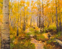 Cheryl St. John - Kebler Trail