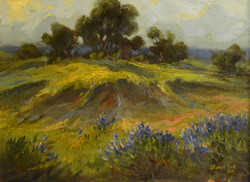 J.R. Cook - Rainy Day in the Hill Country