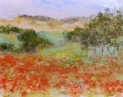 Karla Nolan - Red Poppy Field in Aveyron