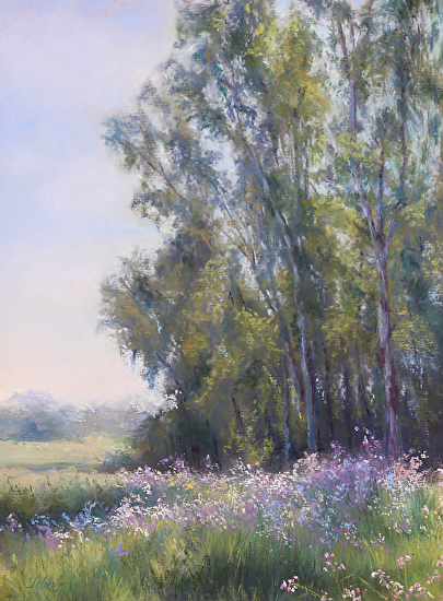 Terri Taber - Eucalyptus Grove