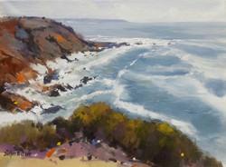 Dieter Berner - Western Cape Coastline