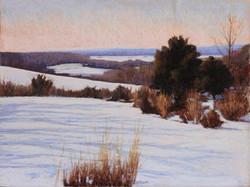Jane Penfield - Long View