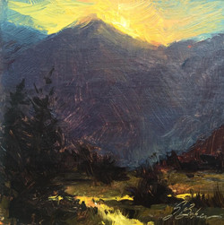Suzie Greer Baker - Telluride Gold
