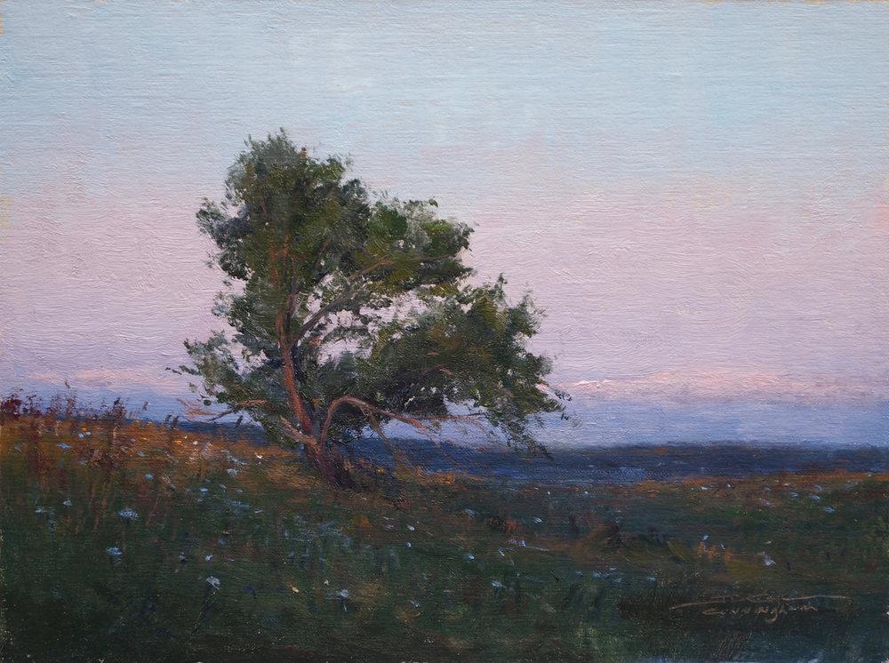 Joshua Cunningham - After Sunset