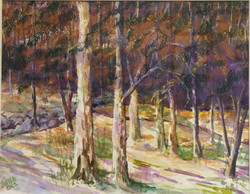 Jane Wright Wolf - Nod Hill Rd, CT
