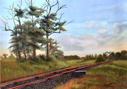 Susan Whiteman - Railway Dreams