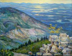 Irina A. Pisarenko - View from Cadillac Mountain, Acadia National Park, Maine