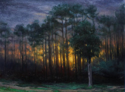 Olena Babak - Southern Pines