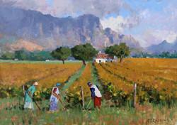 Roelof Rossouw - Three Vineyard Workers