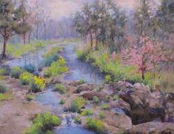 Donna H. Branson - Near Dripping Springs