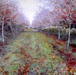 Andrew Barrowman - Birch Avenue