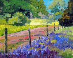 Nancy Paris Pruden - Field Across the Fence (plein air)