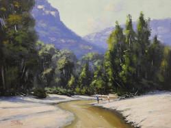 John Rice- The Capertee River