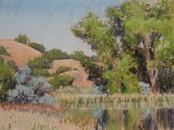 Clark Mitchell - Cottonwood Pond (plein air)