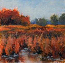 Tamar Rudavsky - Autumn Reeds
