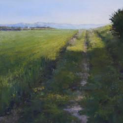 Florence Penouty - Budding Wheat at Malras