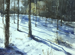 Dominik Baricevic - Snow Shadows